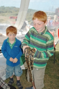 Children meeting Phoebe the Royal Python at the Wildlife Corner - photo by Aggz Waywell