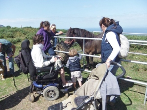 Interacting with Tom the Exmoor Pony - photo by David Rolls 2013