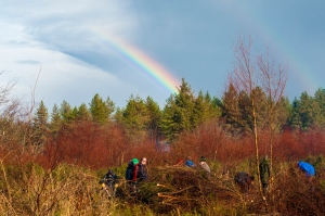 South Molton Scouts looking for a pot a gold whilst lopping invasive birch trees.