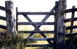Highly Commended - Peter Edmondson - Gateway to the Moor