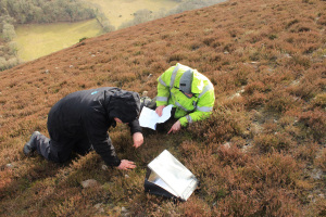 Dan C and Dan F started to foster an intense interest in lichens